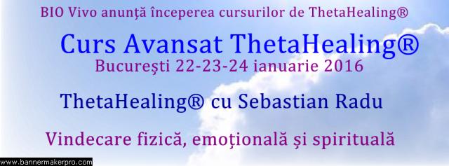 curs avansat ian 2016 thetahealing