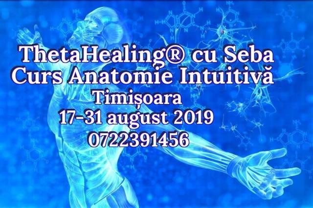 Anatomie Intuitiva Timisoara 17-31 august 2019